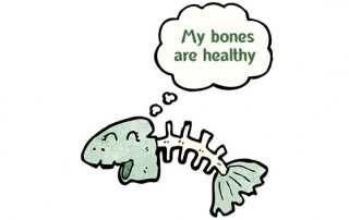 fish with healthy bones