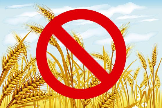 no grains as fibromyalgia treatment