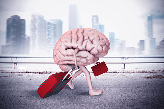 brain escape with luggage