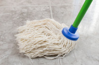 mop as clean toxins