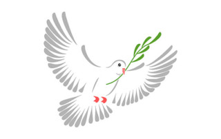a dove with a olive leaf as symbol of peace